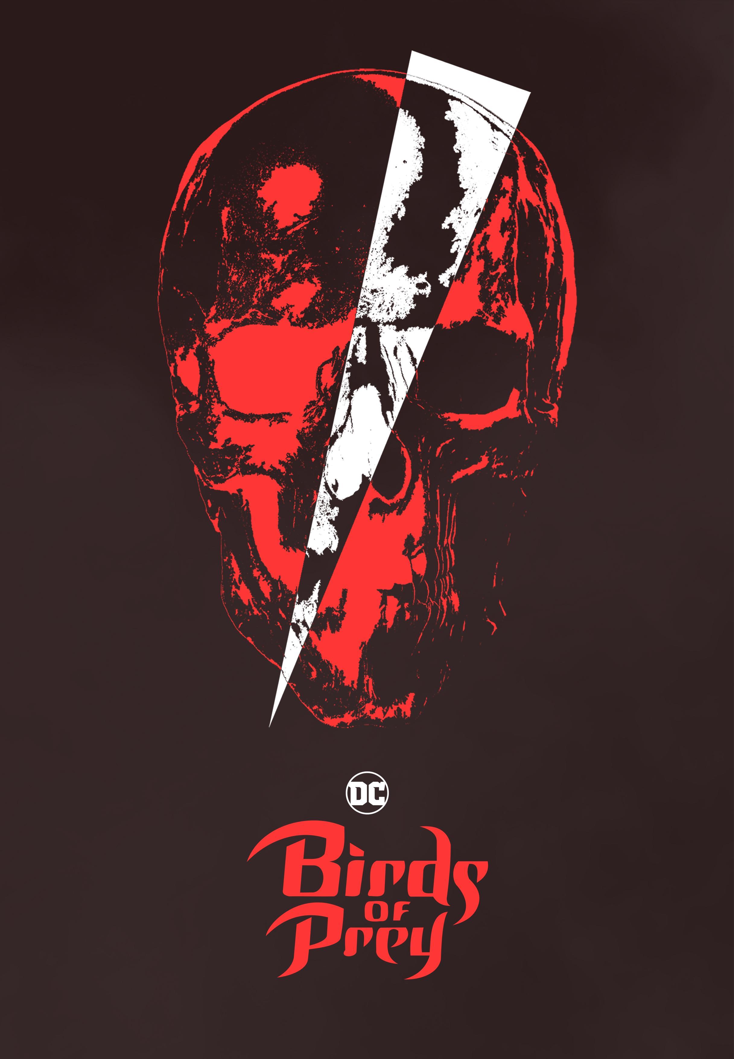birdOfPrey1.jpg