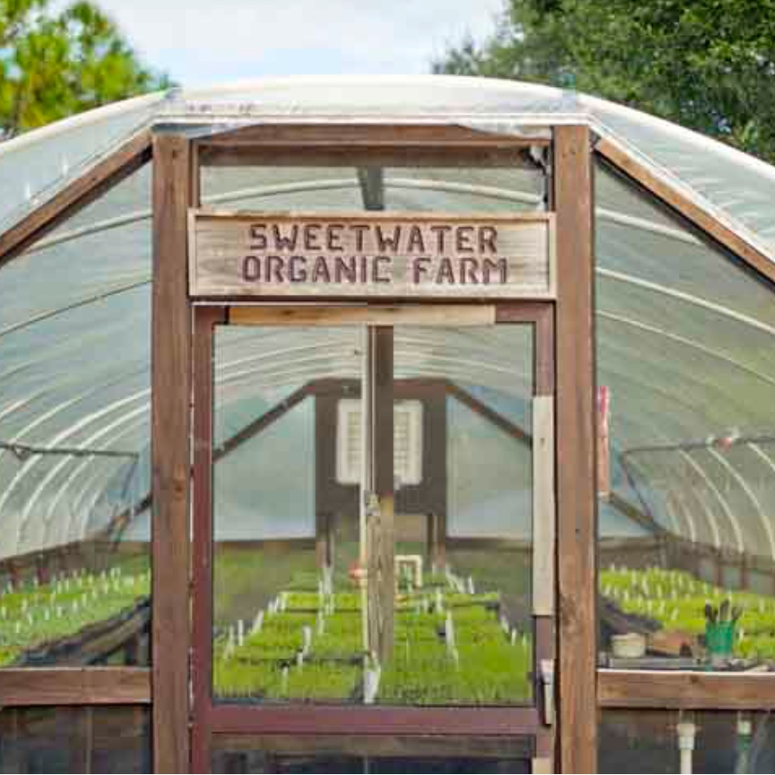 SWEETWATER FARMTOWN N' COUNTRY - Sundays, 12-4 pm, Oct-June | Produce available to Public6942 W Comanche Ave, Tampa, FL 33634