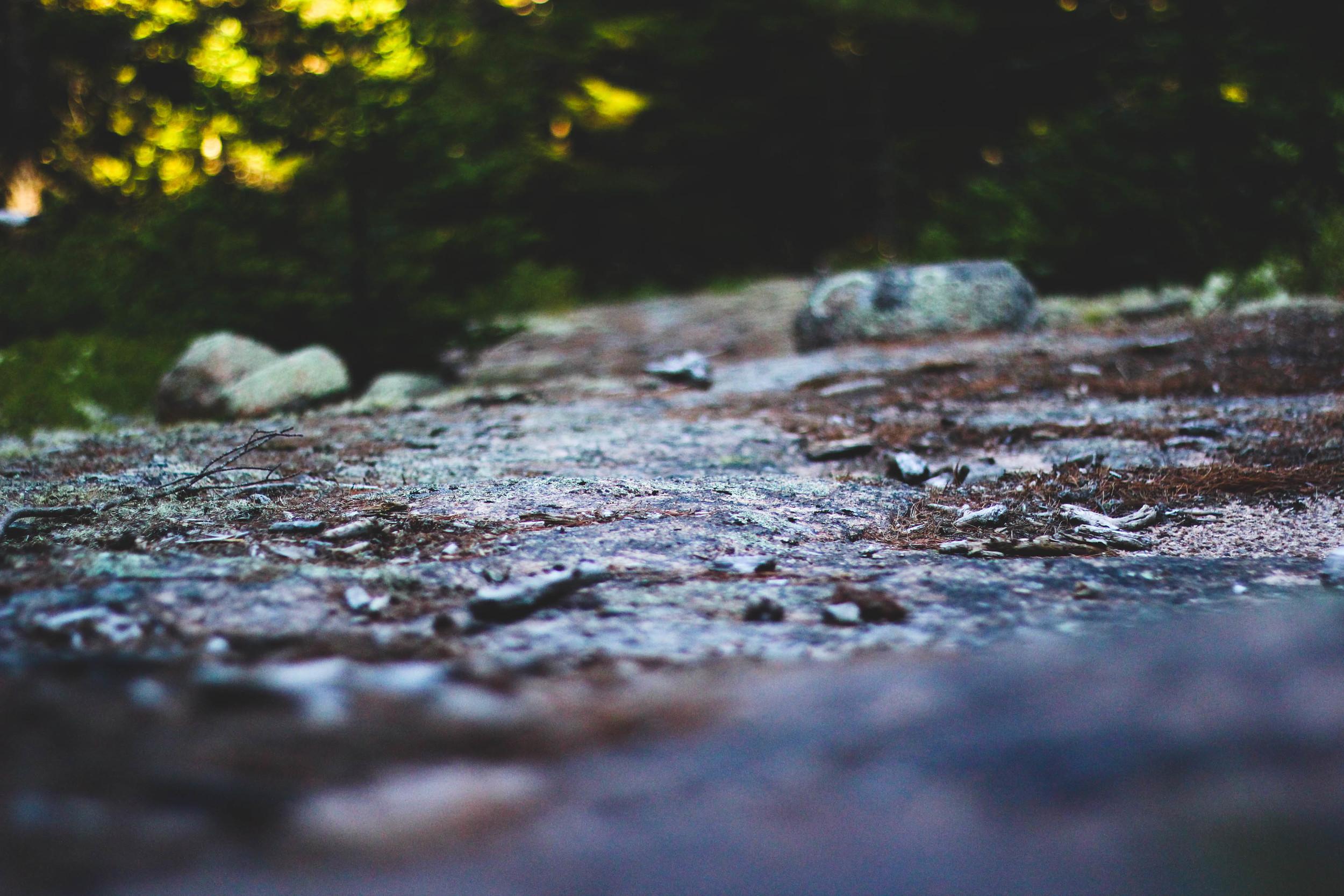 Nature itself-6.jpg
