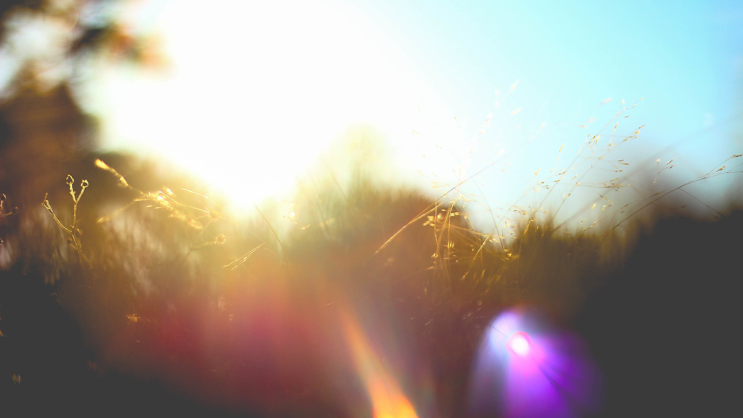 Nature itself-12.jpg