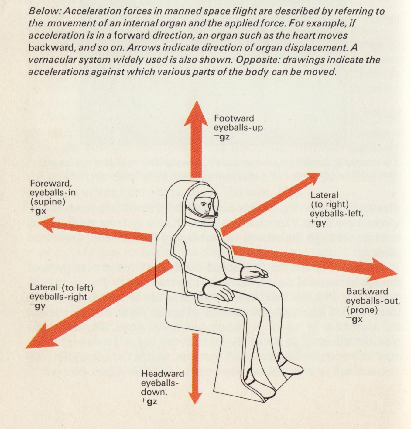 Astronaut(40).jpg