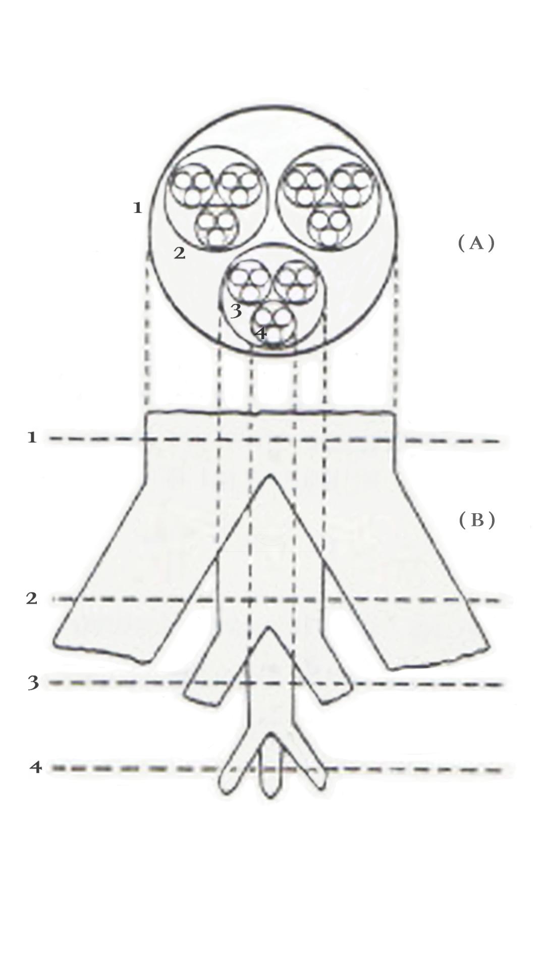Holarchy(12).jpg