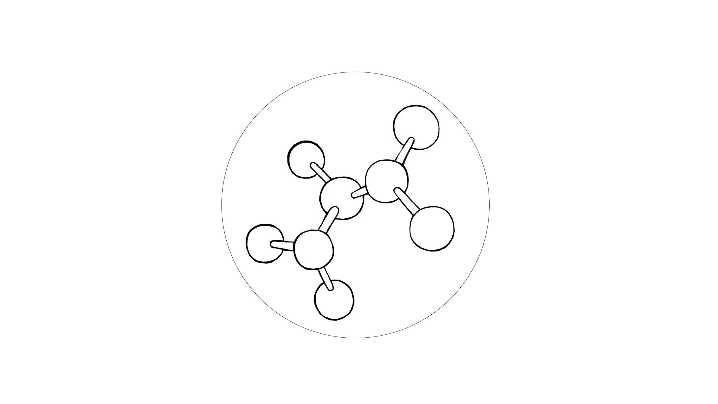 molecule ( amino acid )