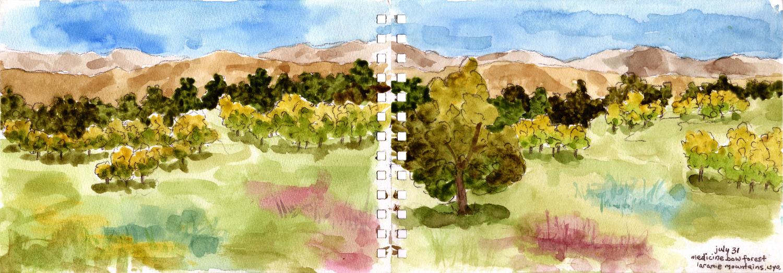 medicine bow laramie mountains