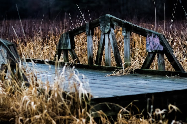 """""""The Little Bridge That Could"""" lives in the Harvey Allen Trail in Amherst, MA. A favorite thinking spot & source of inspiration for these songs."""