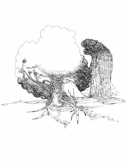 bearded bird tree