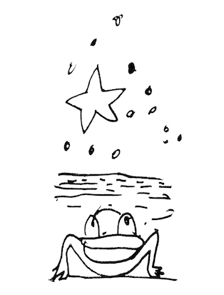 the frog and the star