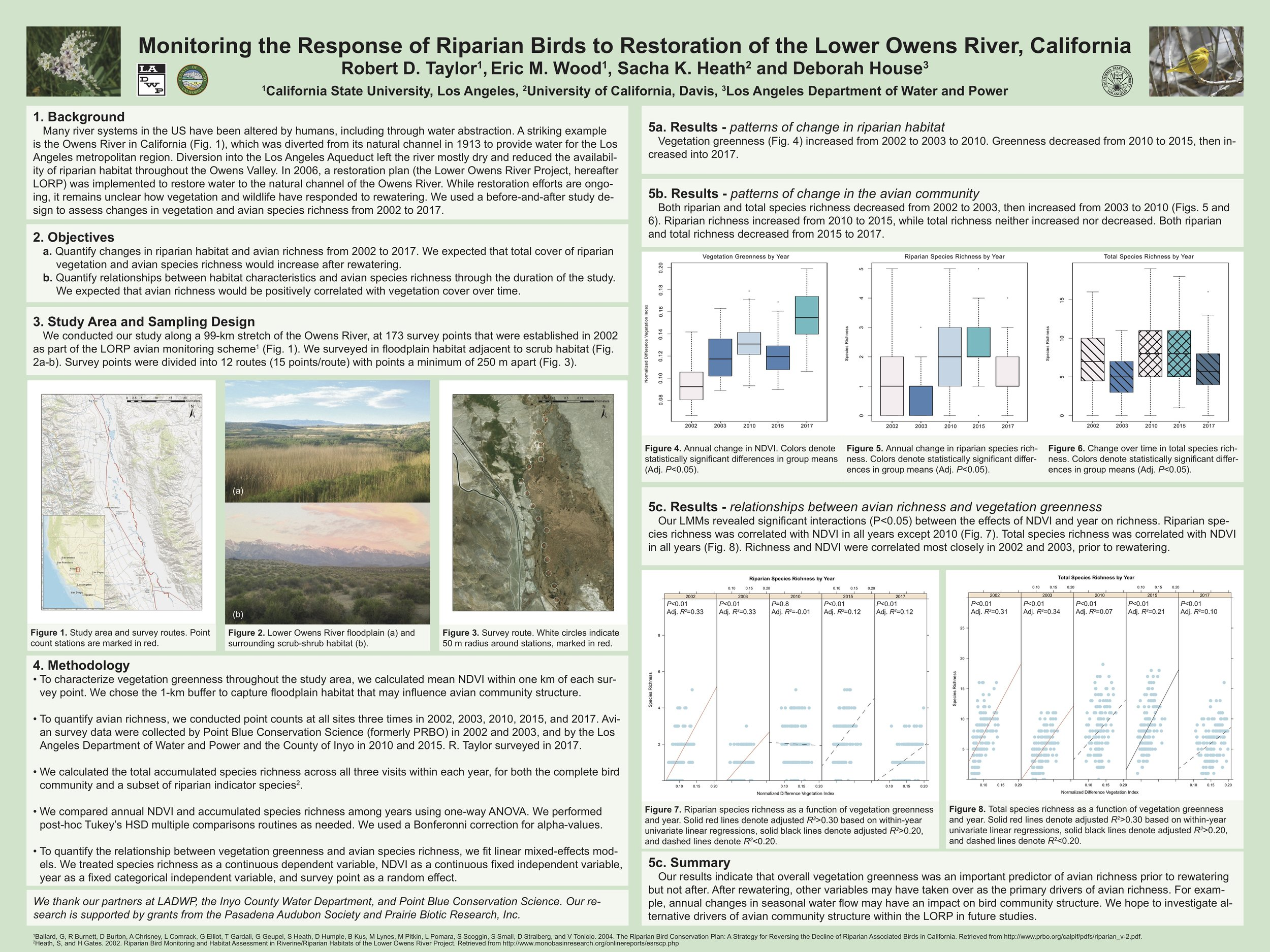 Bob's field efforts were a resurvey of locations that were originally established and surveyed in the early 2000s (pre-watering). There were a handful of post-watering surveys, and Bob added two more years of work to those efforts This poster highlights the change over time by the avian community following rewatering efforts. Avian communities initially rebounded following rewatering, but have seemingly leveled off. While adding water to the system does have a positive impact on the region's avian community, additional efforts (e.g. creating extensive floodplain habitat) are likely necessary to truly bring the system back.