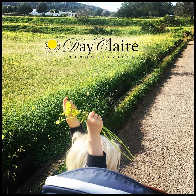 When winter feels like spring~ we 💛 Ibiza! Happy new year all!! Like us to take your little one for a walk as well? Be in touch 📩 info@dayclaire.com 🐤