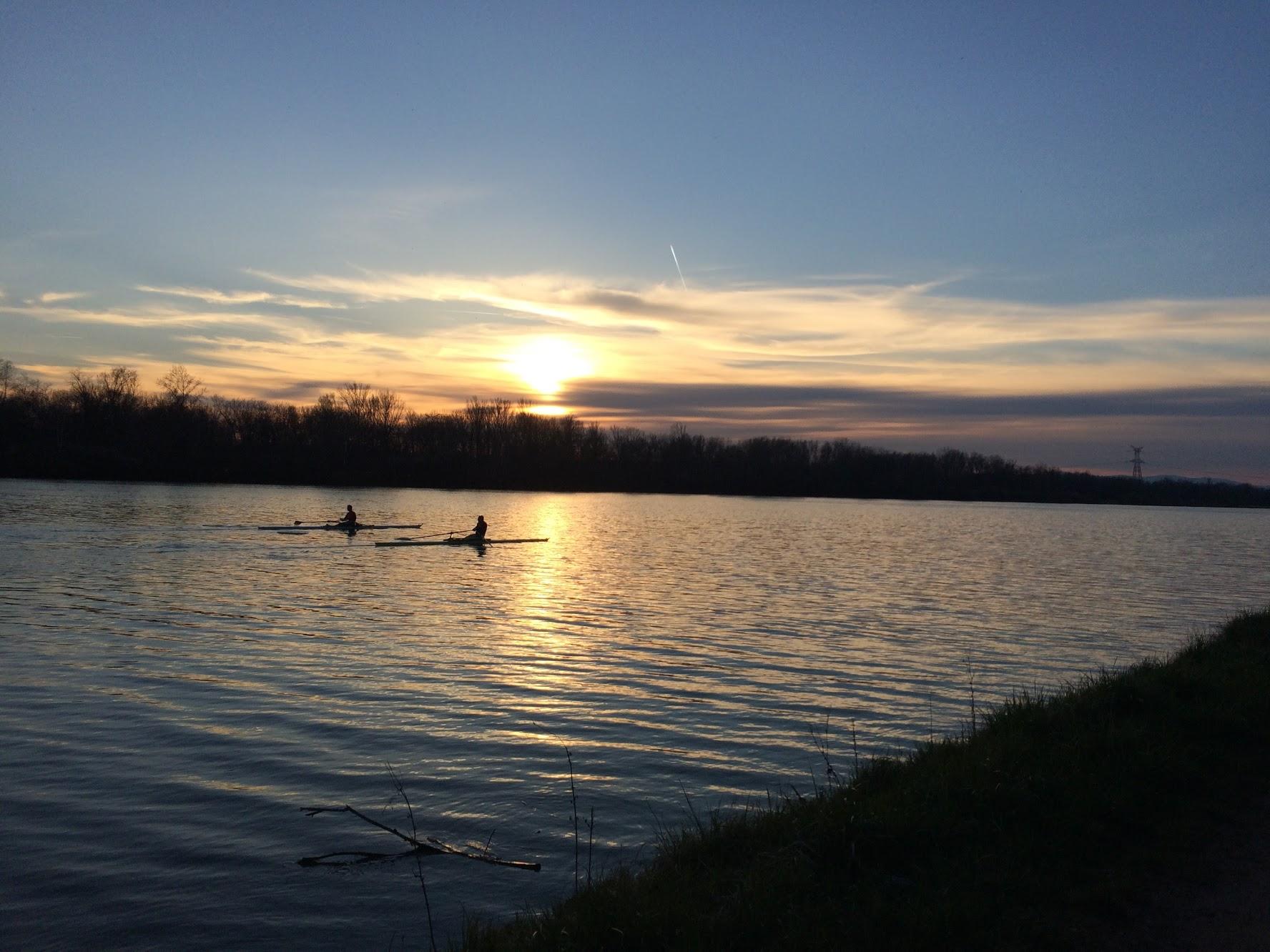 The Rhine River   April 2015.