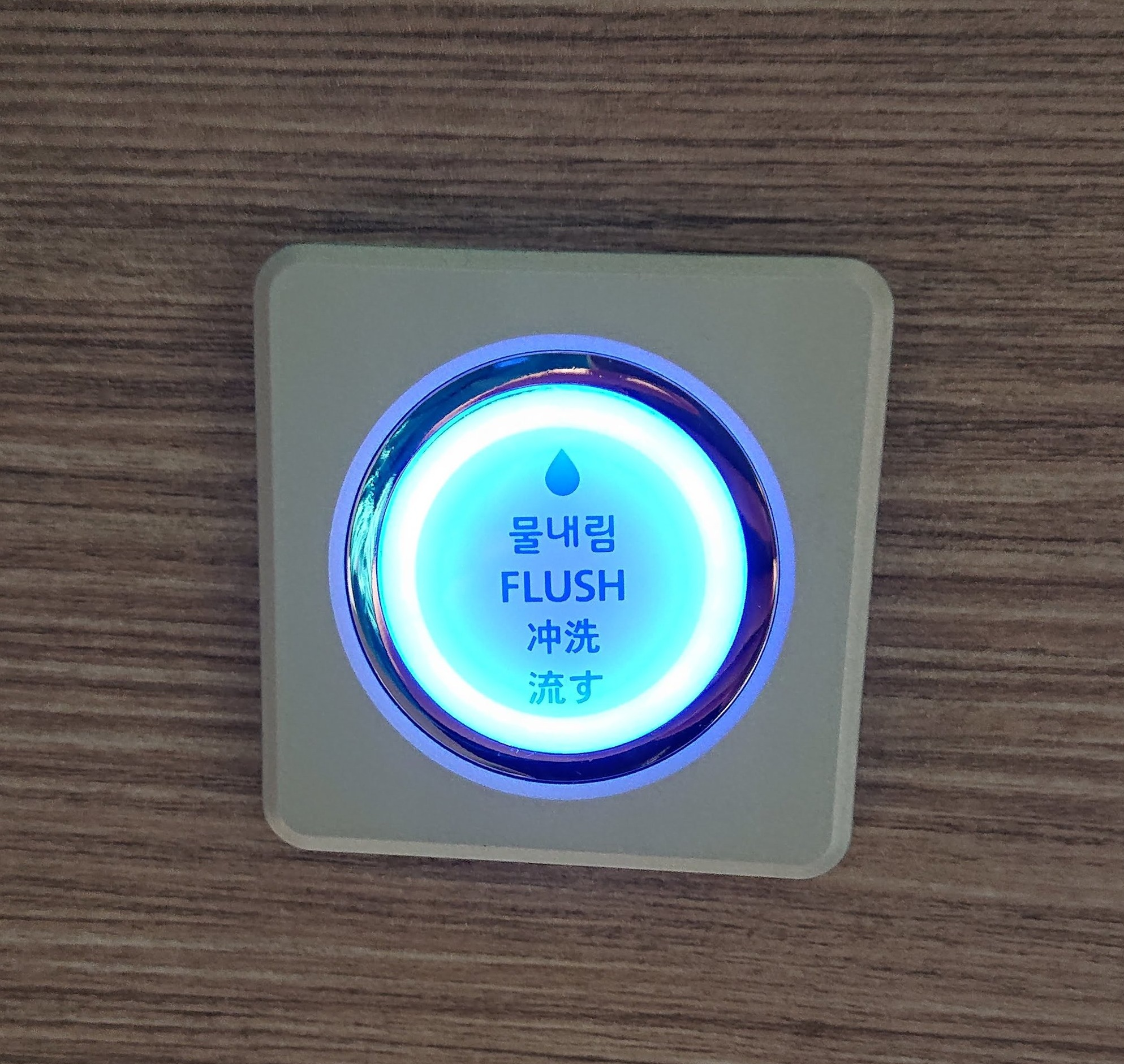 Even the flush buttons in Korea are flashy.