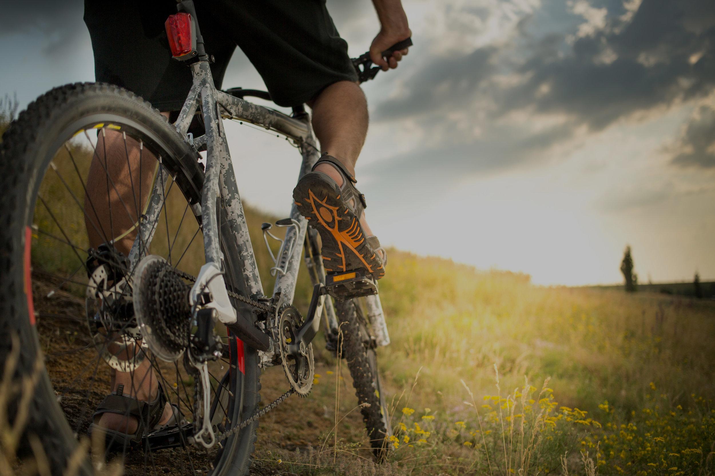Das ultimative Bike-Arrangement