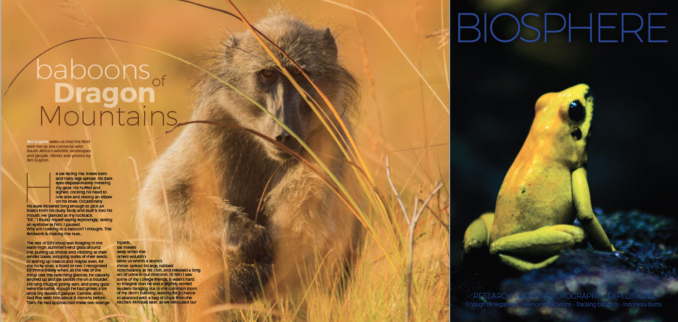 The article below was published in 2015 (unfortunately with a typo in the title) in Biosphere Magazine (www.biosphereonline.com), an online popular science magazine dedicated to the natural world. Download the original PDF of the article  here .