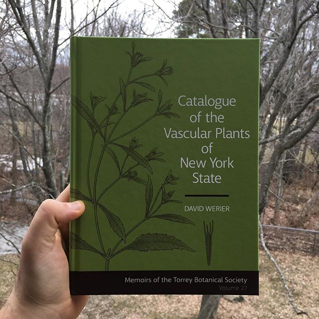Spring can't come soon enough in the Empire State. Just received my copy of the Catalogue if the Vascular Plants of New York State by David Werier. #Botany #Botanizing #Plant #Plants #NewYorkPlants #NYPlants #NewYorkBotany #NYBotany #TorreyBotanicalSociety #MemoirsOfYTheTorreyBotanicalSociety #Nature #NaturePorn #Nature_Obsession #NY #NewYork #WesternNewYork #WNYNature #FieldGuide #FieldGuides #TheFieldGuides