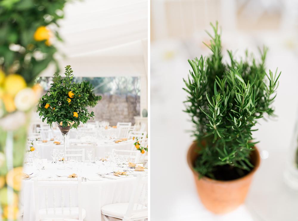 algarve_wedding_photography_eimear_marc_63.jpg