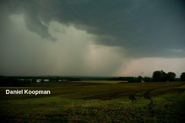 0104-Koopman4.jpg