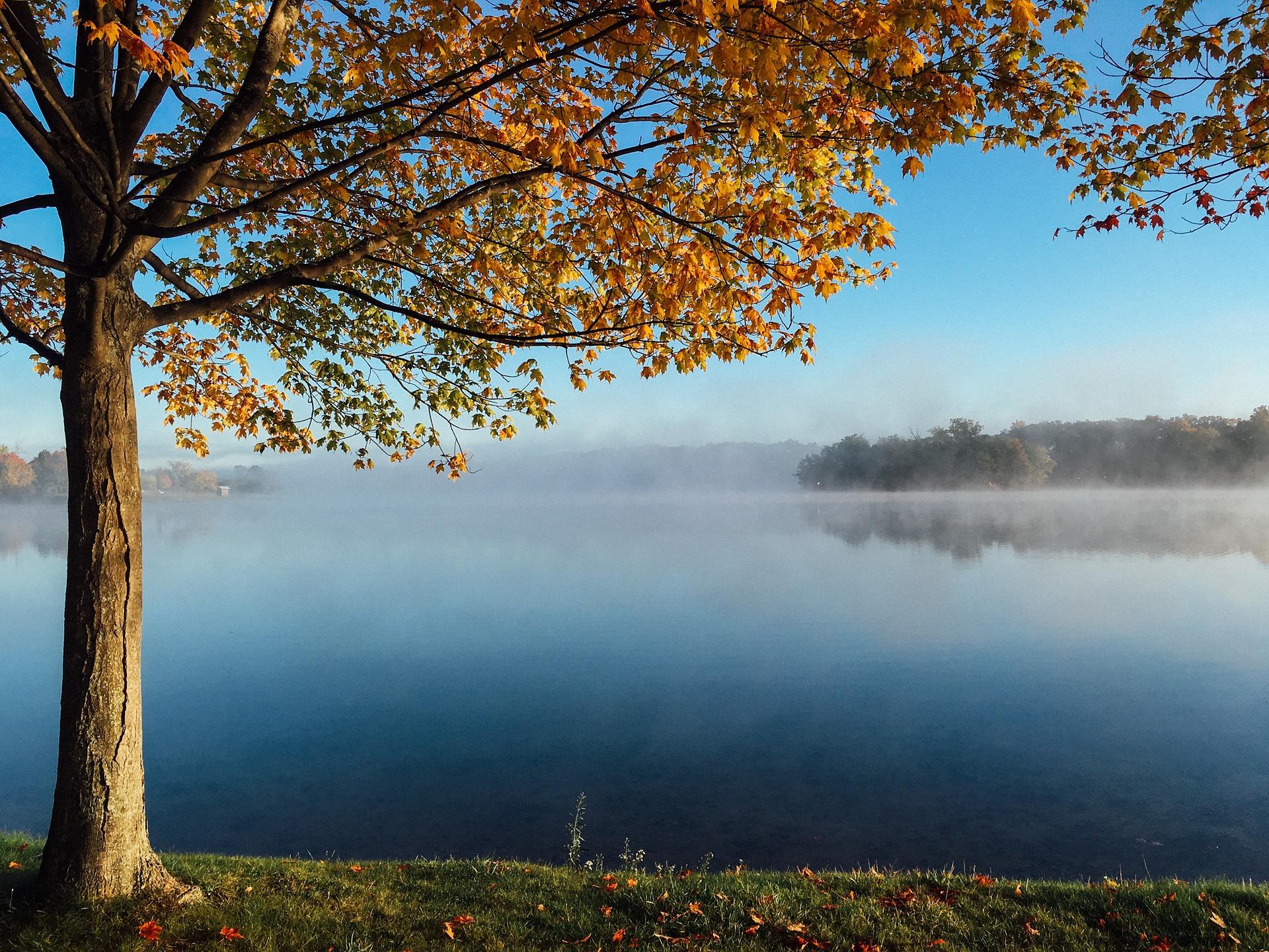 lake-983924_1920.jpg
