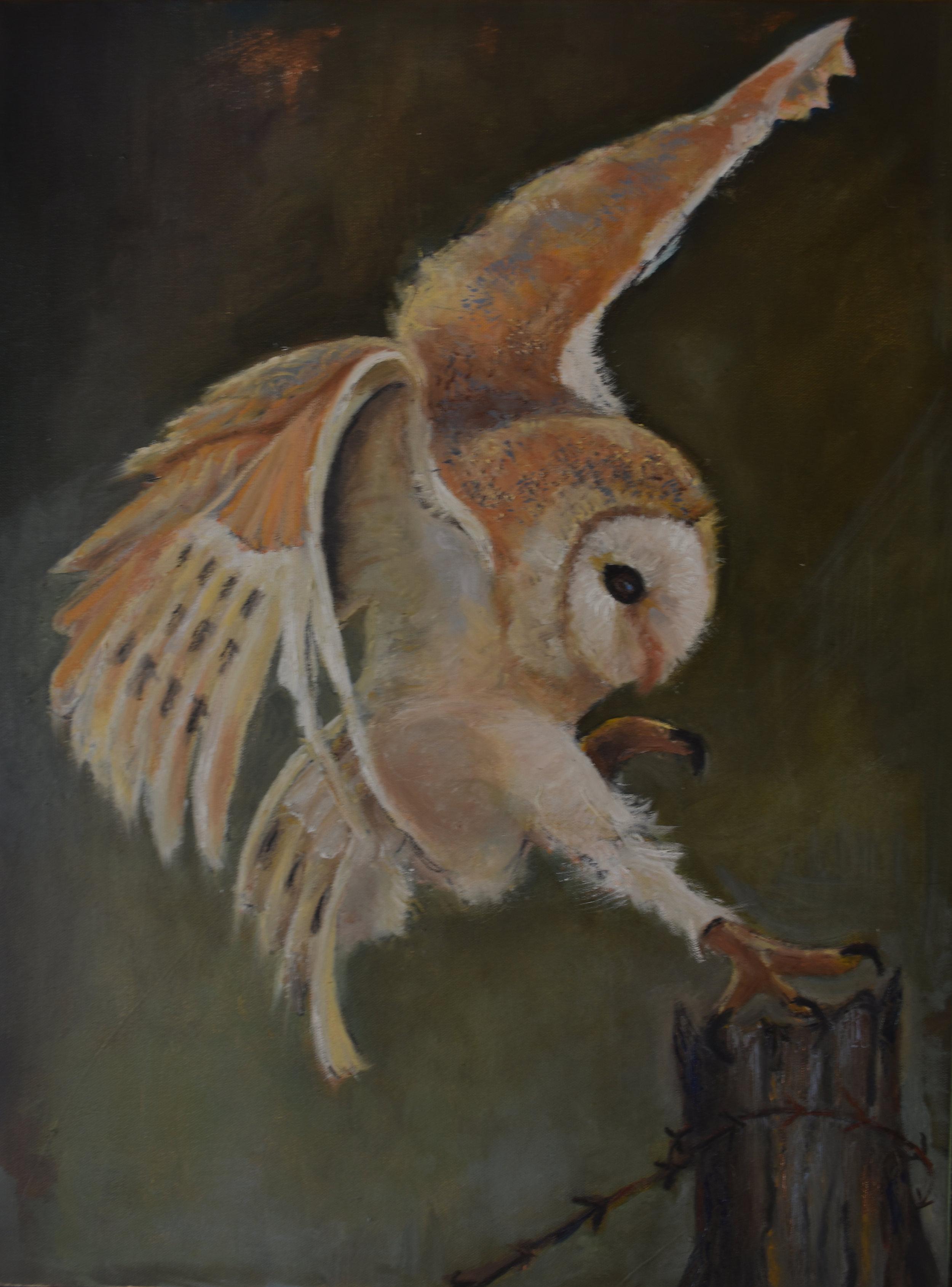 Owl Landing.jpg