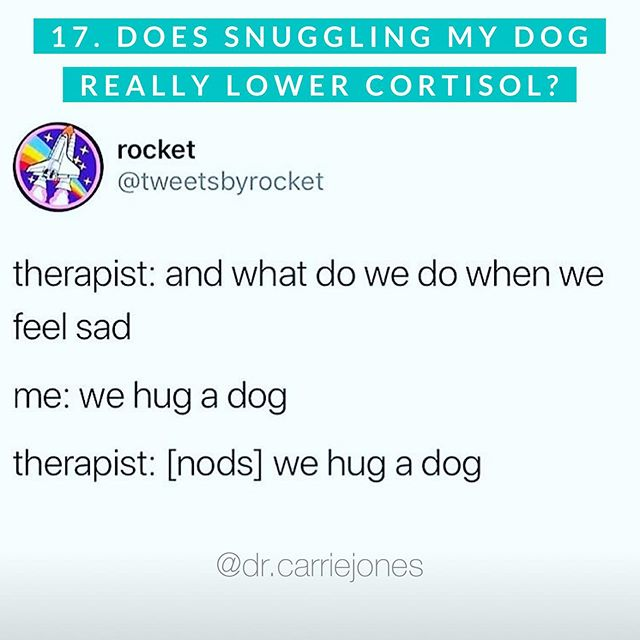 """Question 17: Does snuggling my dog really help balance my cortisol and adrenaline (fight or flight)? 🐕 . Yes. Yes it does. 😍 . If you've ever heard me lecture, it's often the last piece of advice I give practitioners. 🥰 . """"Pet a dog. A nice one. And only if you're not allergic to it. Dogs raise your oxytocin and lower your cortisol thus pulling you out of fight or flight."""" ~ Dr. Jones. 👩🏼⚕️ . Oxytocin is your bonding hormone. It goes up when you meaningfully hug, touch, snuggle, kiss or are with someone you love. It doesn't need to be romantic. I spent hours with my bffs and feel bonded with less stress. Moms often get the rush with breastfeeding. It can happen after sex with your partner. Or you can snuggle your animal who brings you so 👏🏼 much 👏🏼 joy. 👏🏼 . This causes you to be in para-sympathetic mode (rest, digest, happy, safe, love) and out of stress mode. Swipe to see. ☺️ . As many of you know, we recently adopted @hankthefoxdog (pic) and we are in love. He is better than any meditation or adaptogenic herb. 😊 . Some of you have cats, rats, horses, birds, snakes, cows, goats...etc and they probably bring you immense joy when you see them! 🙂 . Use that immense joy to your advantage! 🙌🏼 . Thank you to @drtyna who obsesses over all the dogs with me! And to @awniebigelow_ for obsessing over our dog Hank every minute of every day! ♥️ . Remember this is a big cortisol series! Go back to catch up on the other question/answers! More to come! 🤓 . Save, repost and tag your dog loving people! 🐕 . . . . . #dogsrule #ilovedogs #gooddog #bestdogever #petadog #dogsforthewin #stress #stressed #stressedout #tired #tiredaf #burnout #gethealthy #behealthy #naturopathicmedicine #naturopathicdoctor #functionalmedicine #rootcause #selfcare #hugs"""