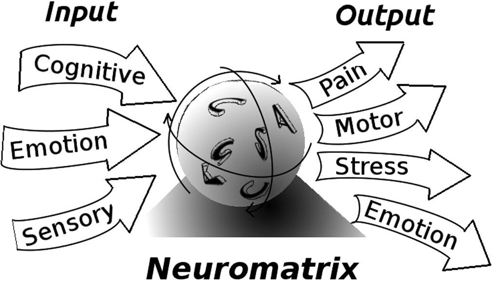 Neuromatrix-Simplified