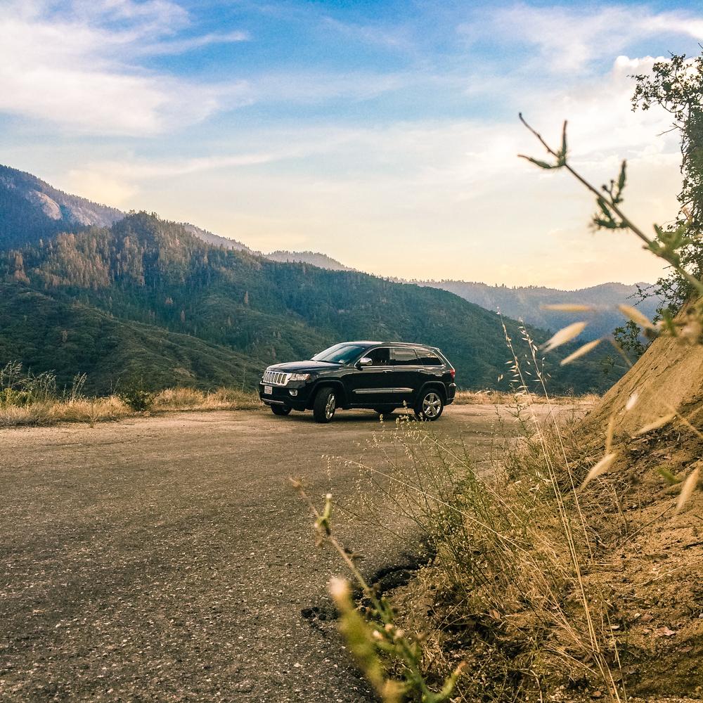 Sequoia Forest_Odaniel_IG (5 of 32).jpg