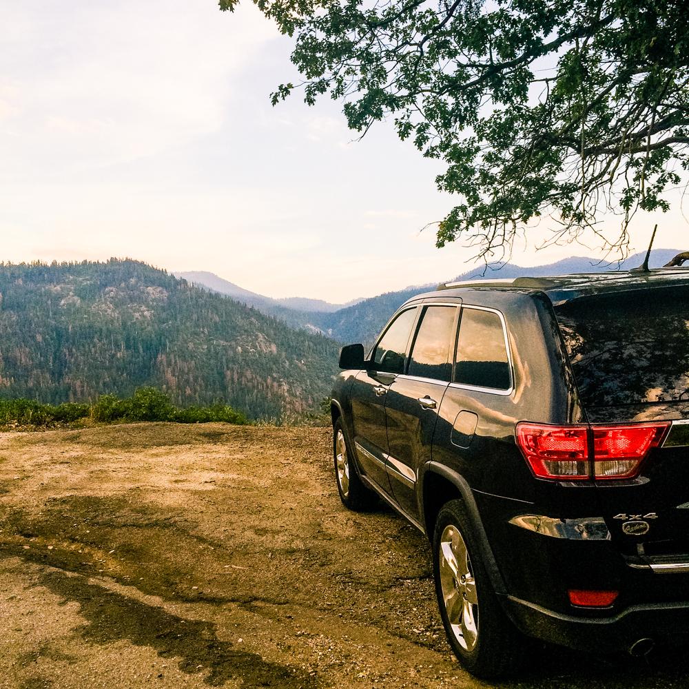 Sequoia Forest_Odaniel_IG (11 of 32).jpg