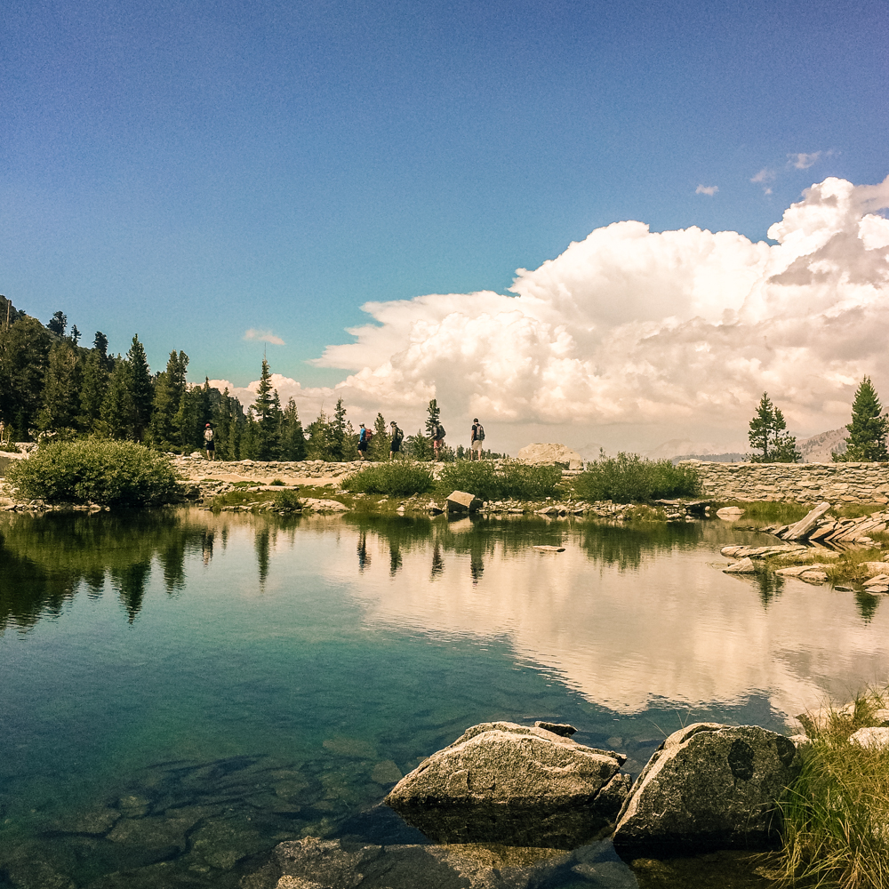 Sequoia Forest_Odaniel_IG (25 of 32).jpg