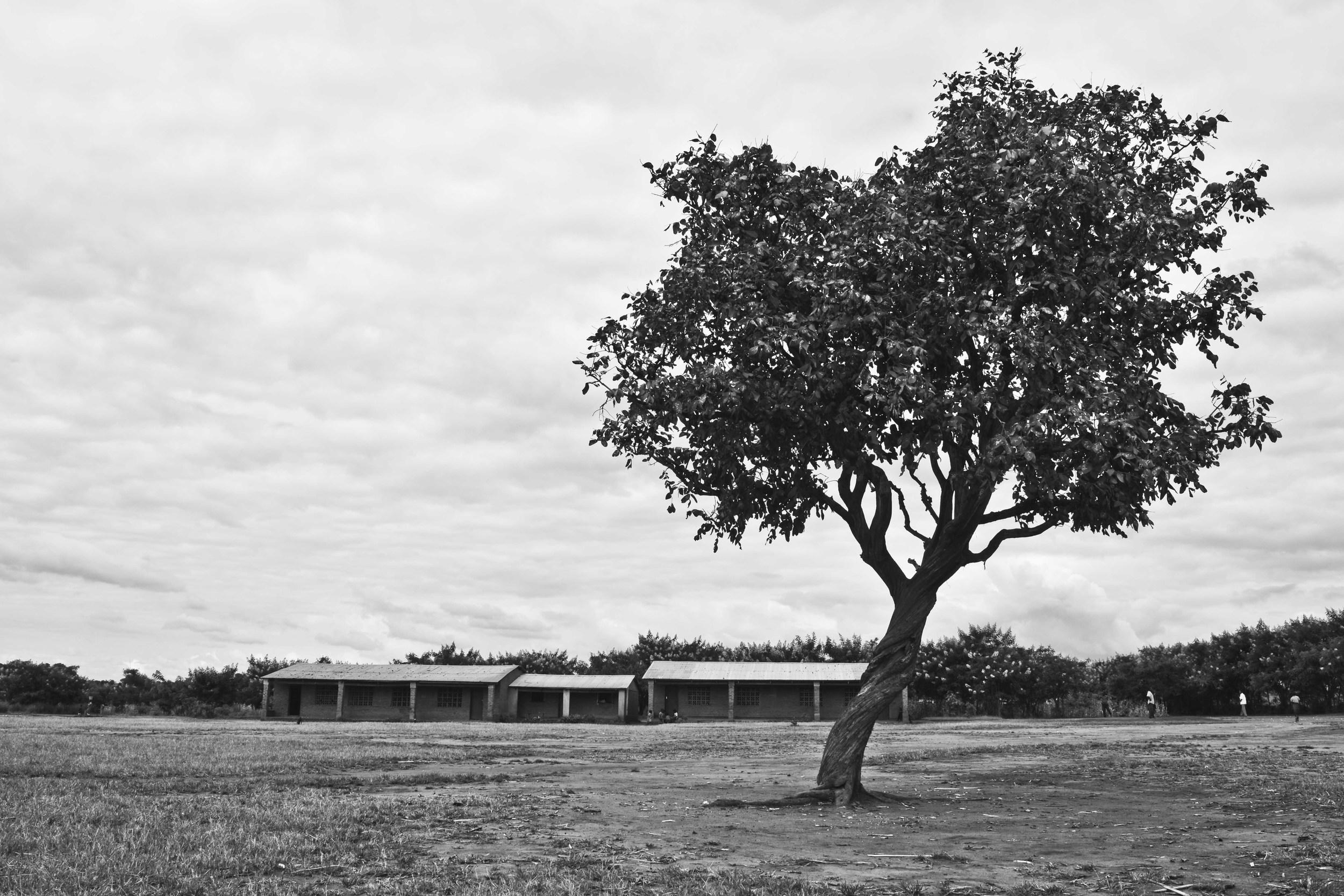 Above:  Kayabwa School, Chapsinja, Malawi