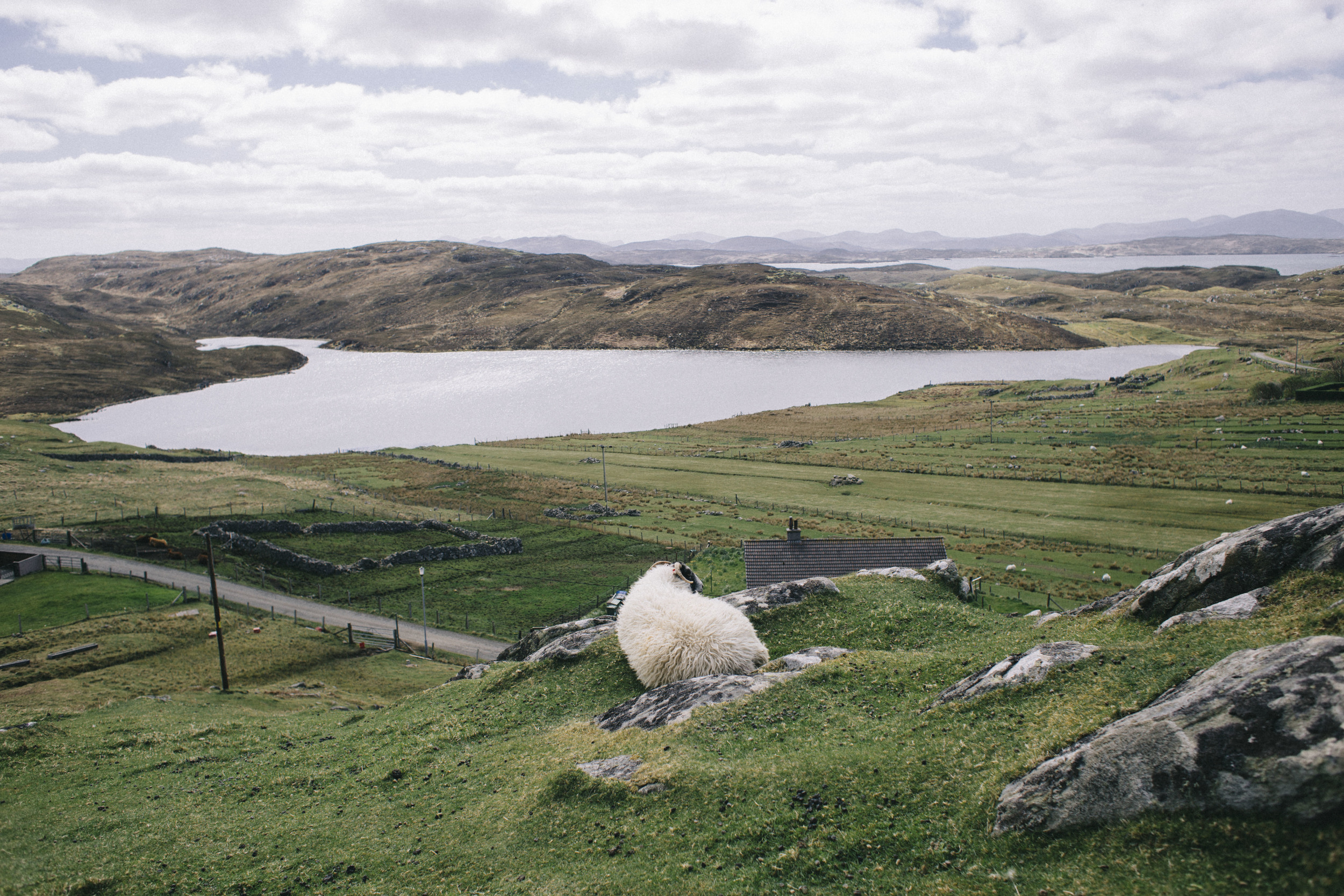 scotland15.jpg