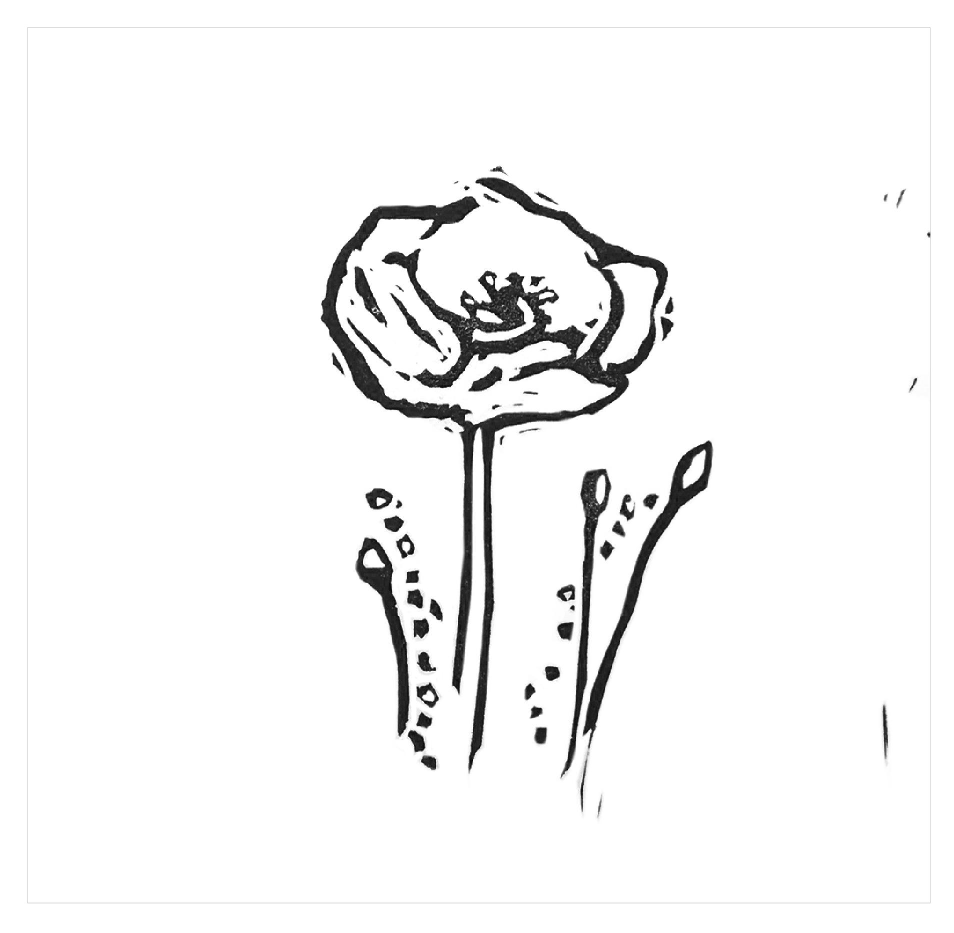 flower_rv-01.jpg