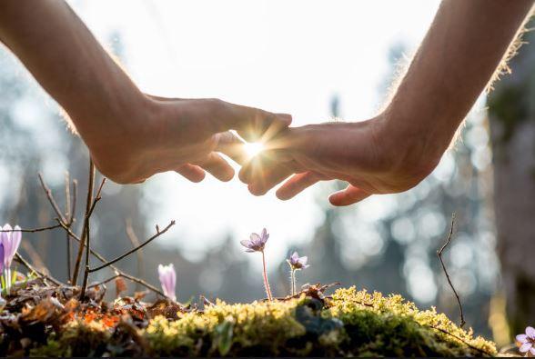 Empath Toolbox — Heather Nardi - The Awakened Parent