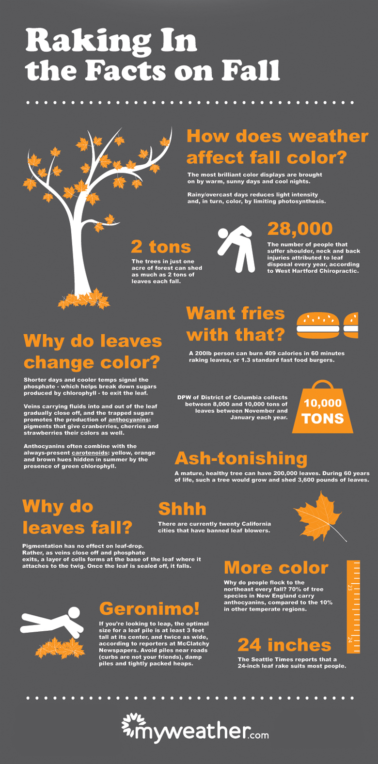 Source: http://infographiclist.com/2011/10/11/raking-in-the-facts-on-fall-infographic/