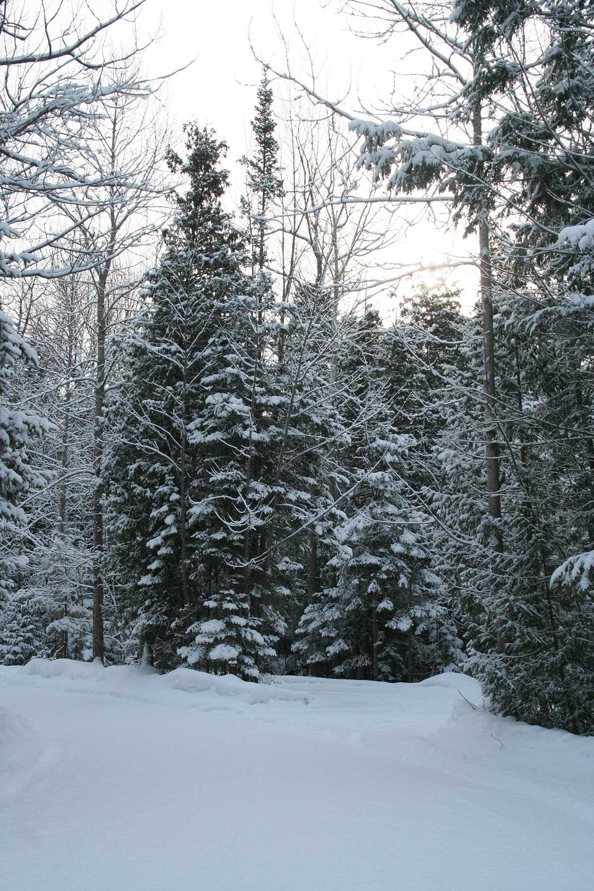 Winter-Camping-Humber-2015-011.jpg