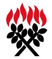 Presbyterian-NZ.png
