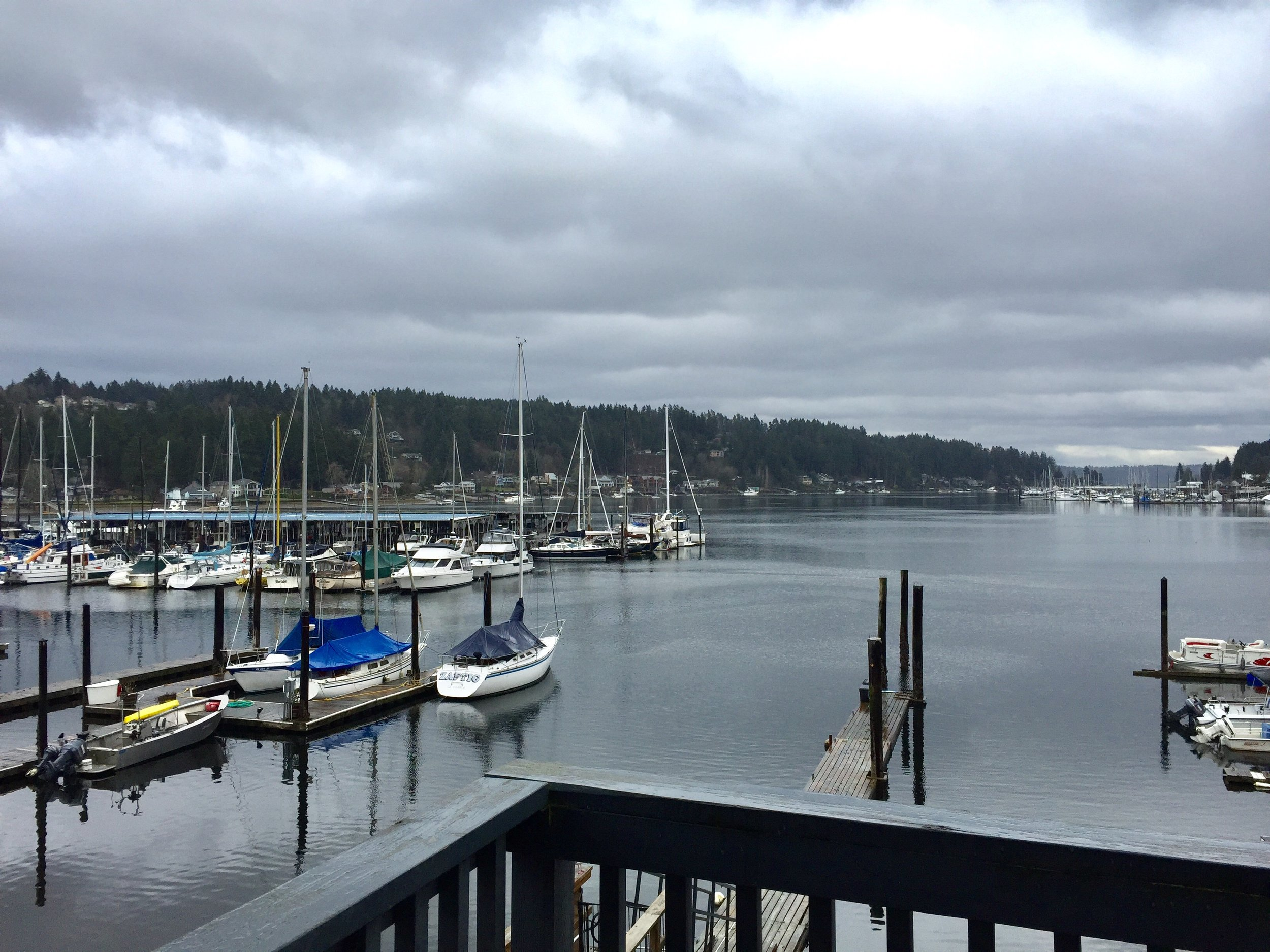 The view of the marina from our table. In the warmer weather you can sit right on the water.