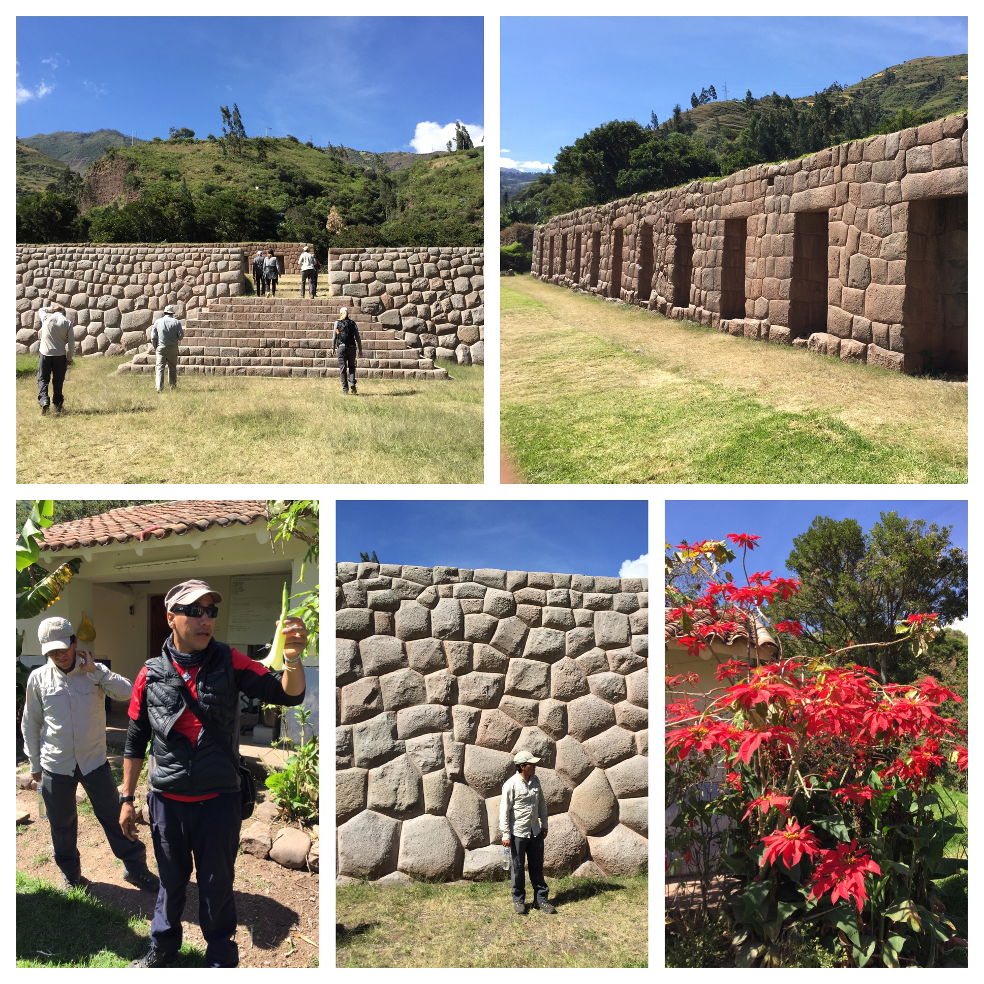 Bottom left picture is of our guides Aly and Berto. Bottom right is a poinsettia bush - huge flowers!