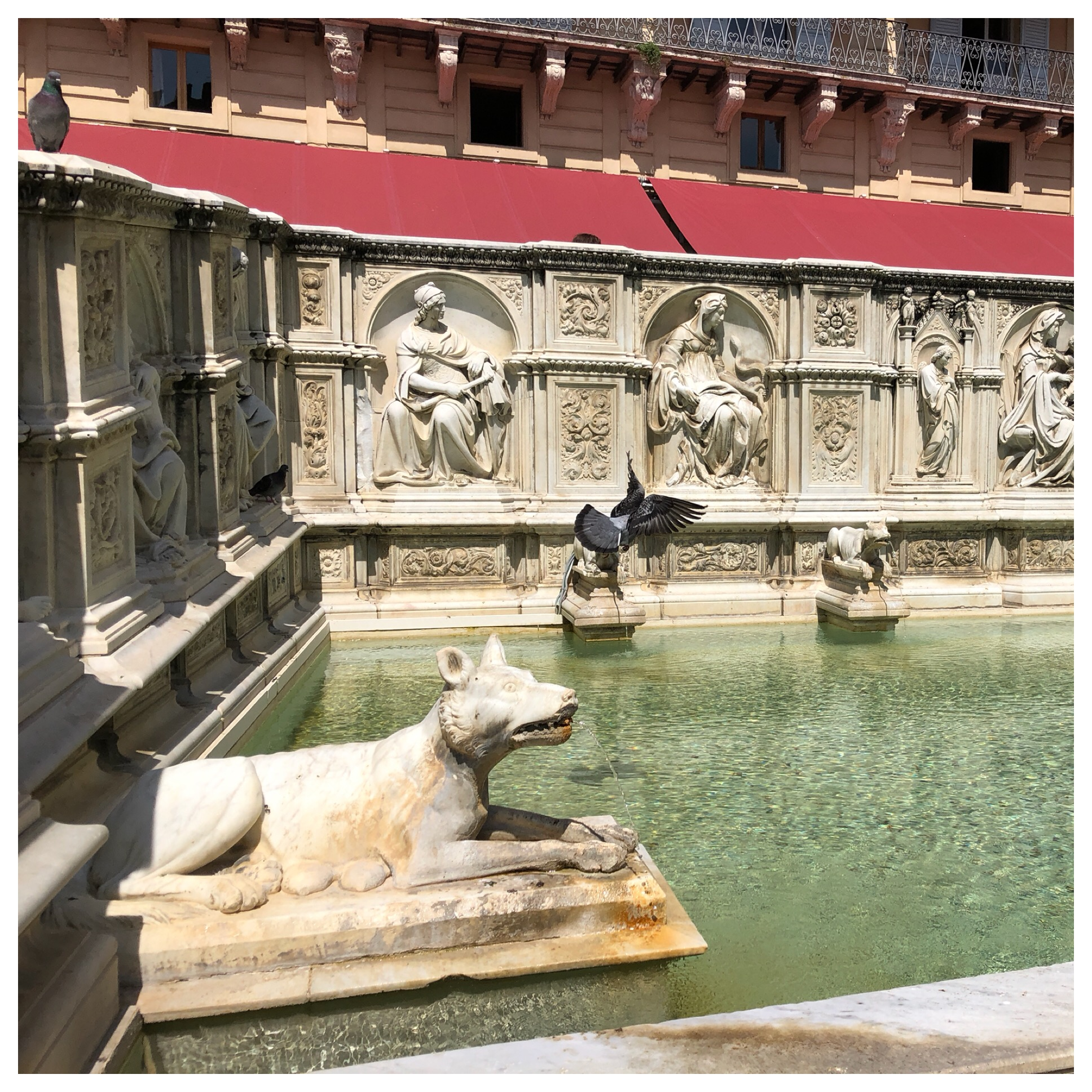 That's a she-wolf. They are all over Siena as one of their symbols.