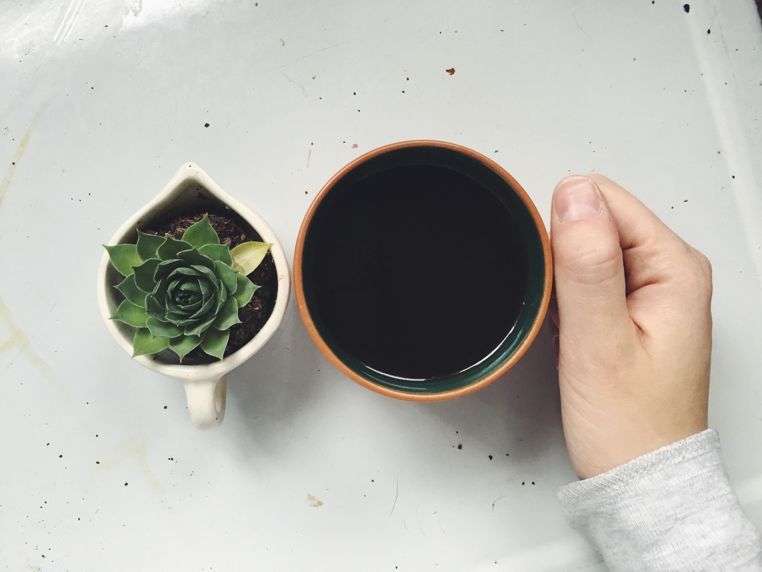 succulent-coffee-hand-simply-liv.jpeg
