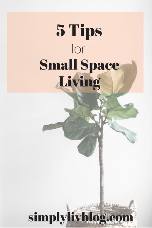 5-tips-for-small-space-living.jpeg
