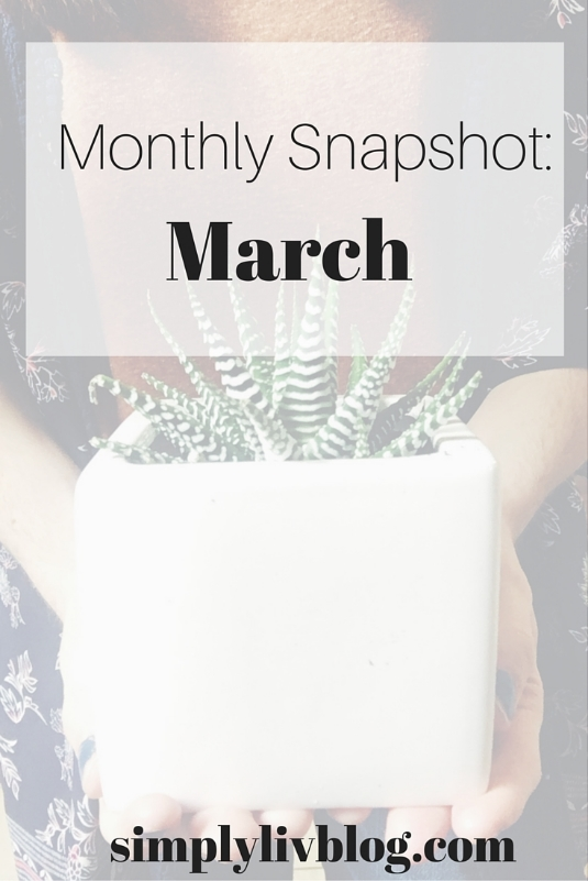 Montly-Snapshot-March.jpeg