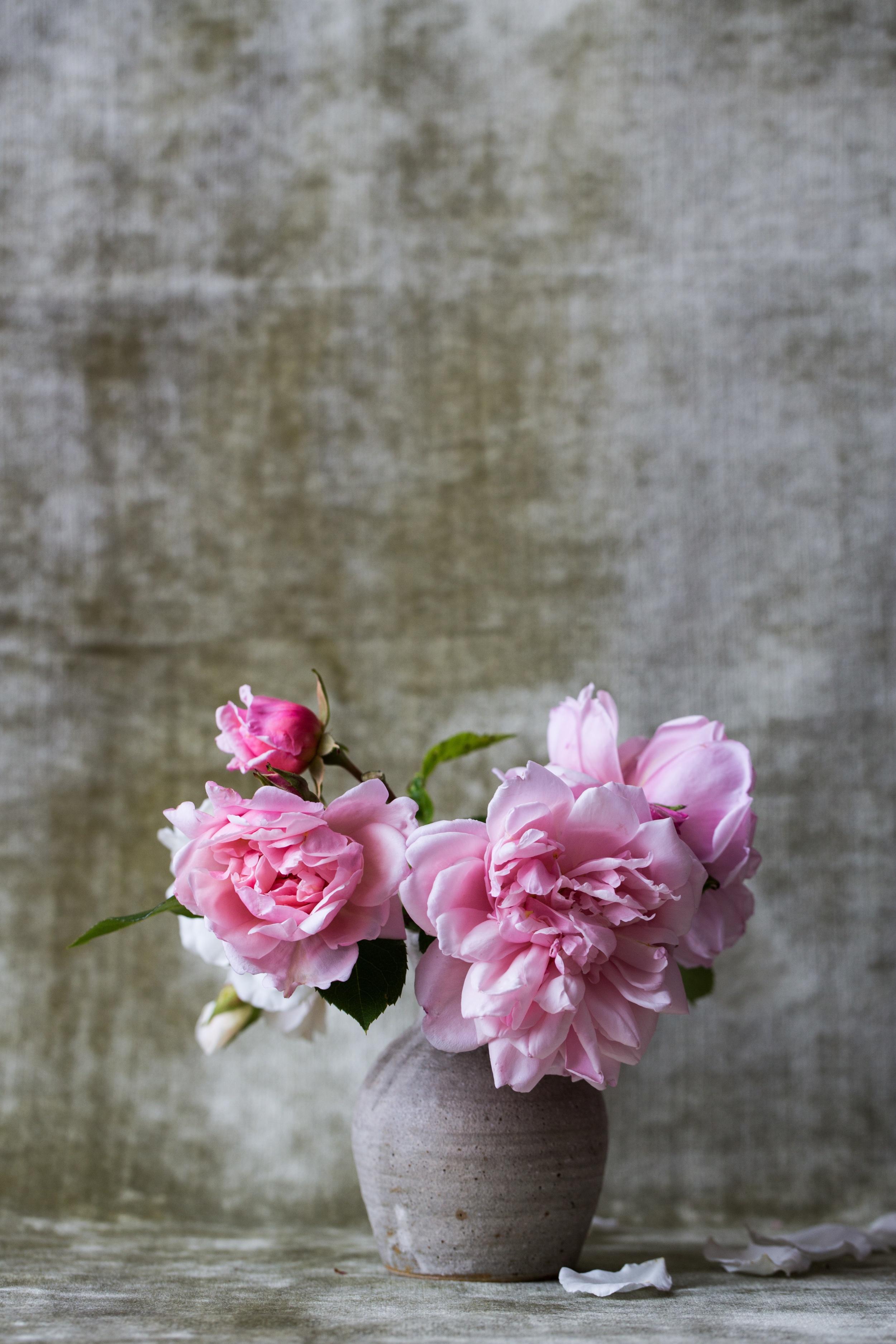 the-simplicity-of-springtime.jpeg