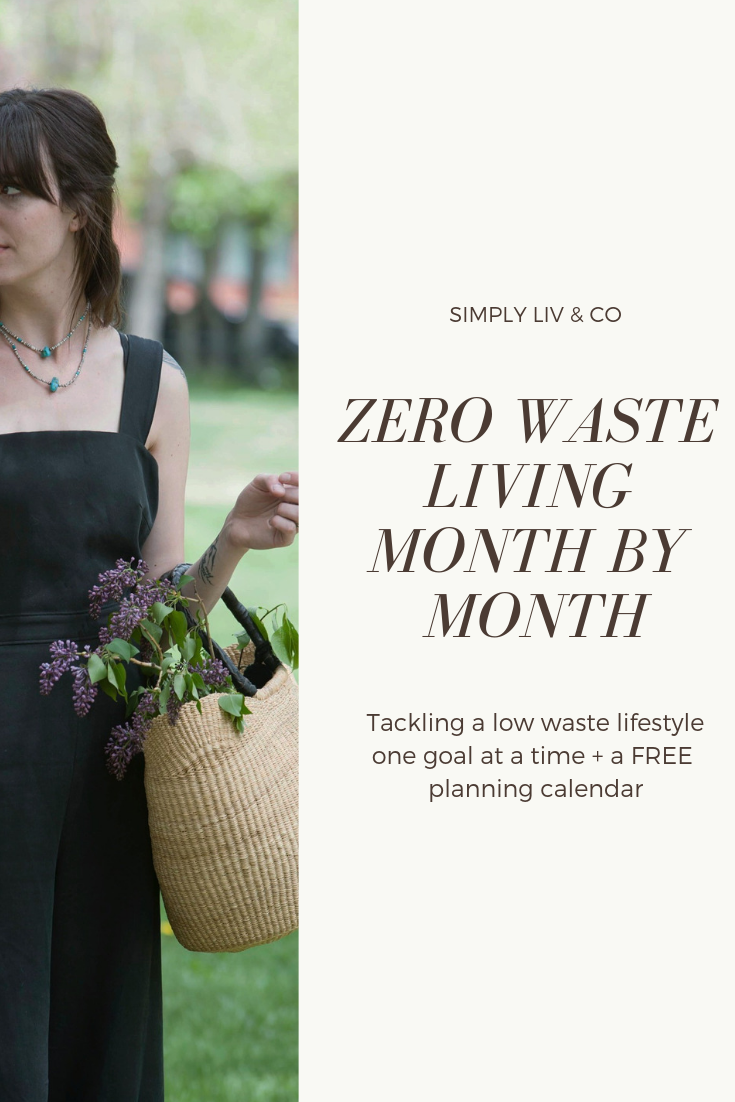 Living a low-waste lifestyle is intimidating. Join me in tackling one goal per month during #InspiringZeroWaste 2019!