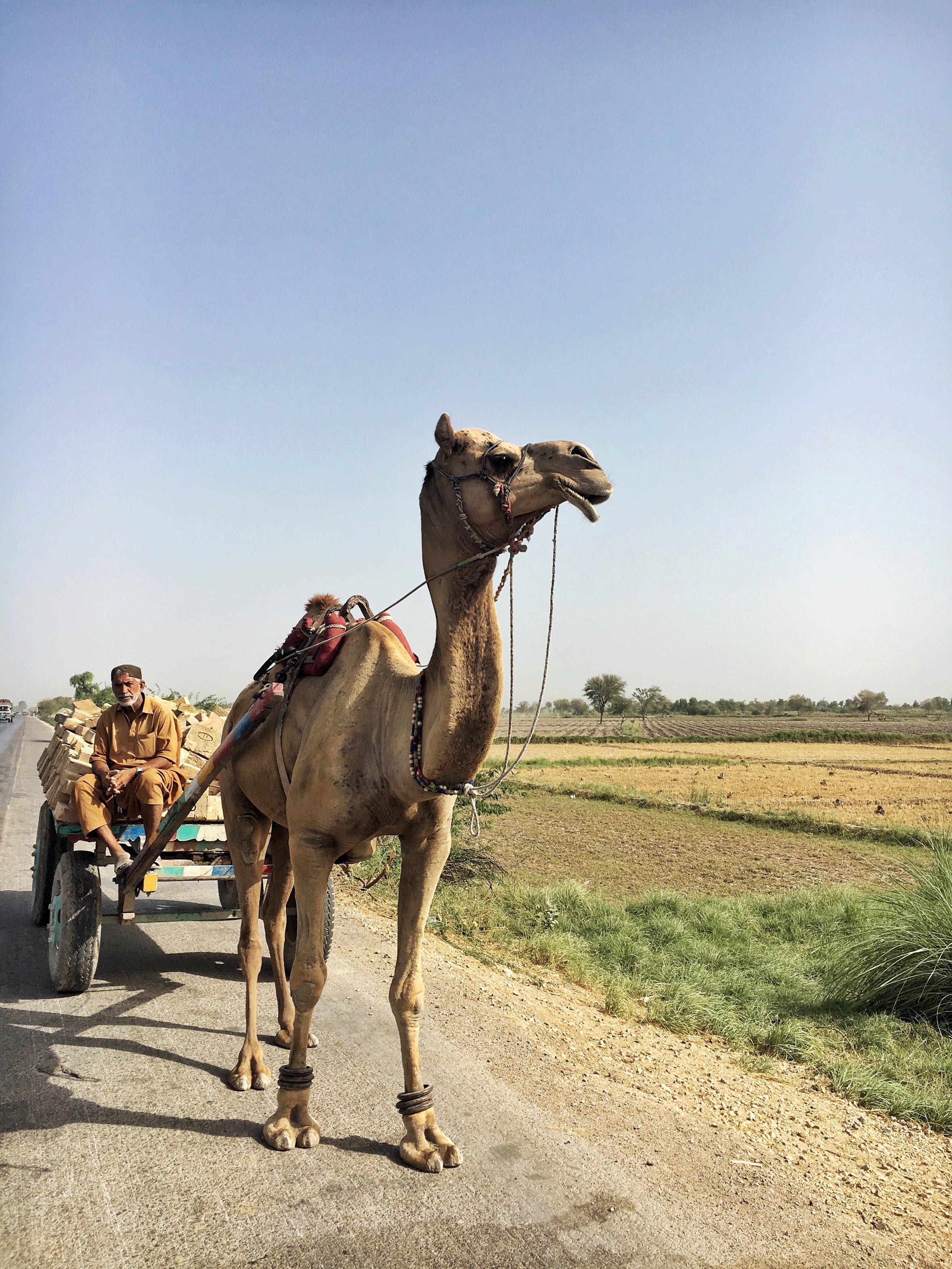 National Highway, Sindh, Pakistan