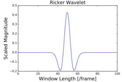 Ricker Wavelet Signal