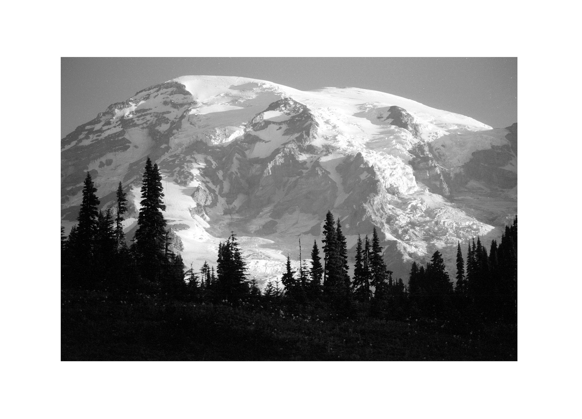 Mt. Rainier NP 07.jpg