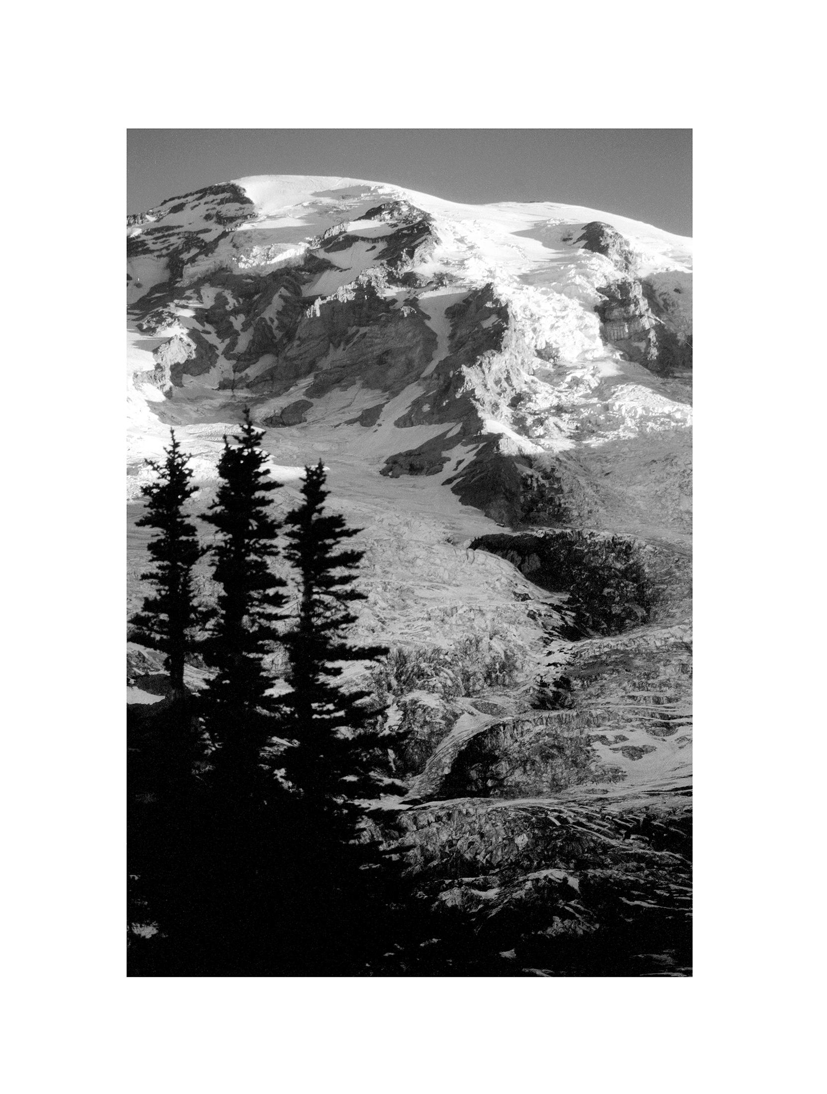 Mt. Rainier NP 08.jpg