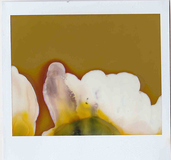 To be a vallery one, altered polaroid, 2016.jpg