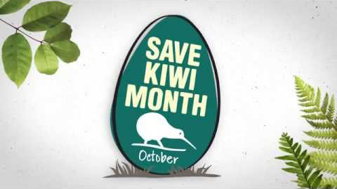 Save Kiwi Month runs for the month of October. Find out more on Kuwi's Save Kiwi Month events here.