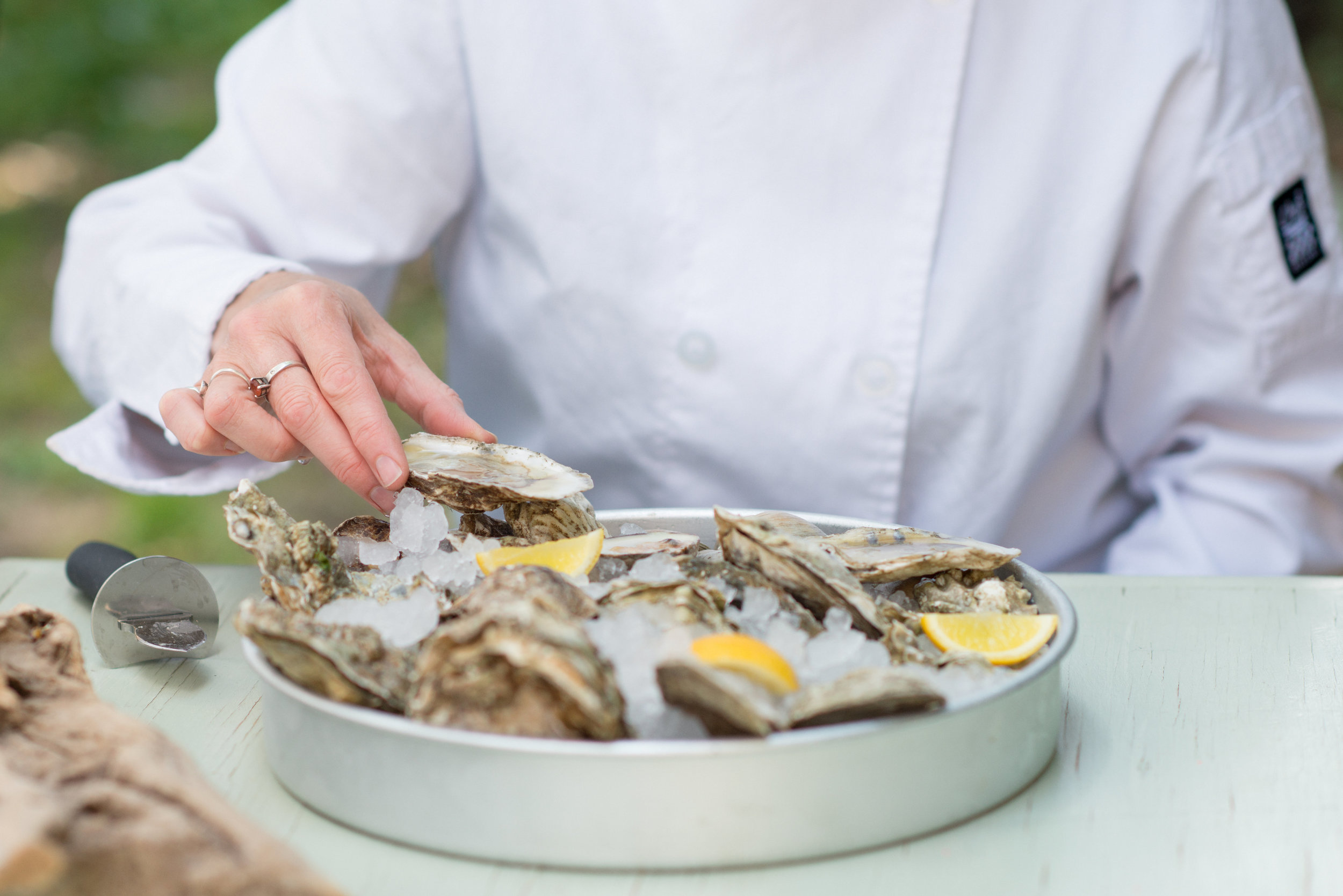 A plate of oysters on the half shell on ice
