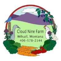 cloud-nine-logo.jpg